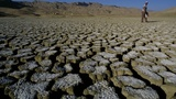 Weeks before election, scientists ask, 'What about climate change?'