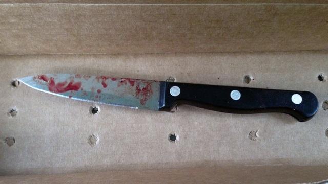 Doe Lane knife