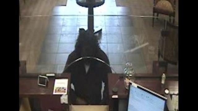 Synovus Bank robber
