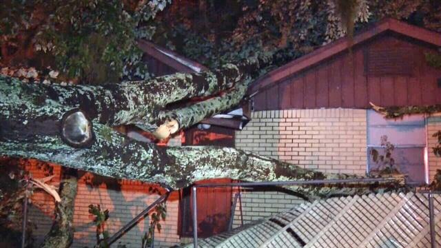 Tree-falls-on-home.jpg_26668374