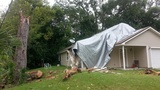 Camden County officials want homeowners to report hurricane damage
