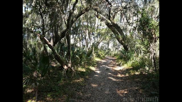hiking3.jpg_25481508