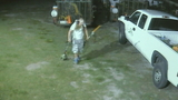Surveillance video captures equipment being stolen from lawn care company