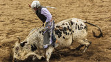 Young bull rider suffers severe injuries