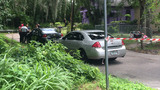 Police investigate body found in woods off I-10