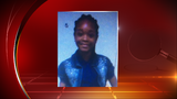 Police searching for missing runaway