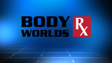 Win tickets to MOSH Body Worlds Rx