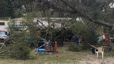Woman dies after tree falls on Columbia County house