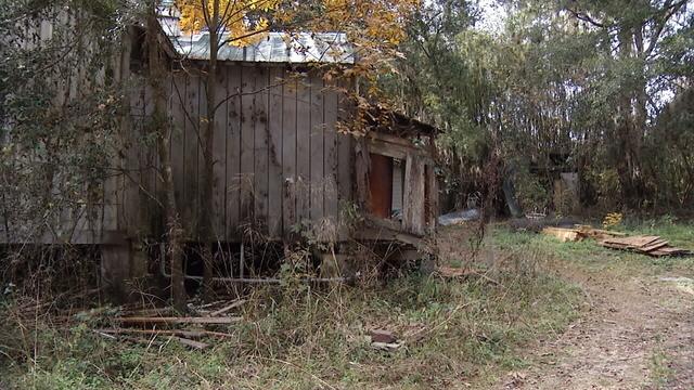 south mandarin home