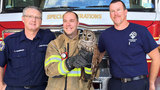 Fire crew rescues tangled owl