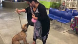 Family reunited with dog lost during Hurricane Matthew
