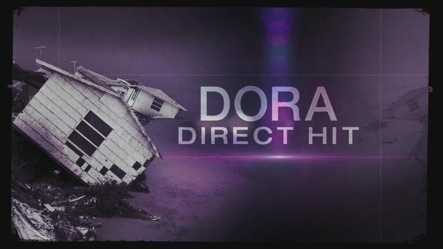 Dora: Direct Hit