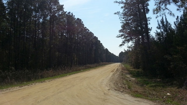 North Glynn County shooting_24917864
