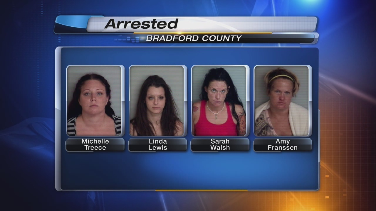 Gainesville Ga Escorts >> 6 Arrested In Starke Prostitution Sting