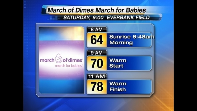 March of Dimes March for Babies Forecast_25640676