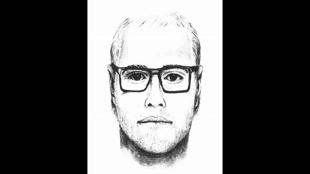 Burglary Suspect_25182744