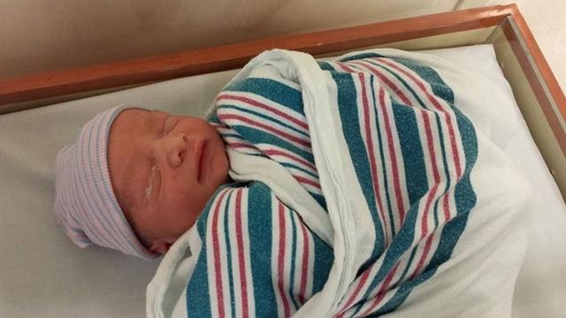 Nikki-Baby-3-jpg.jpg_24763992