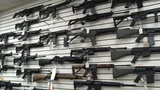 New UNF poll finds Florida voters support sale of assault weapons