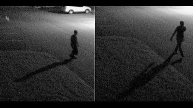 Car burglars_19804986