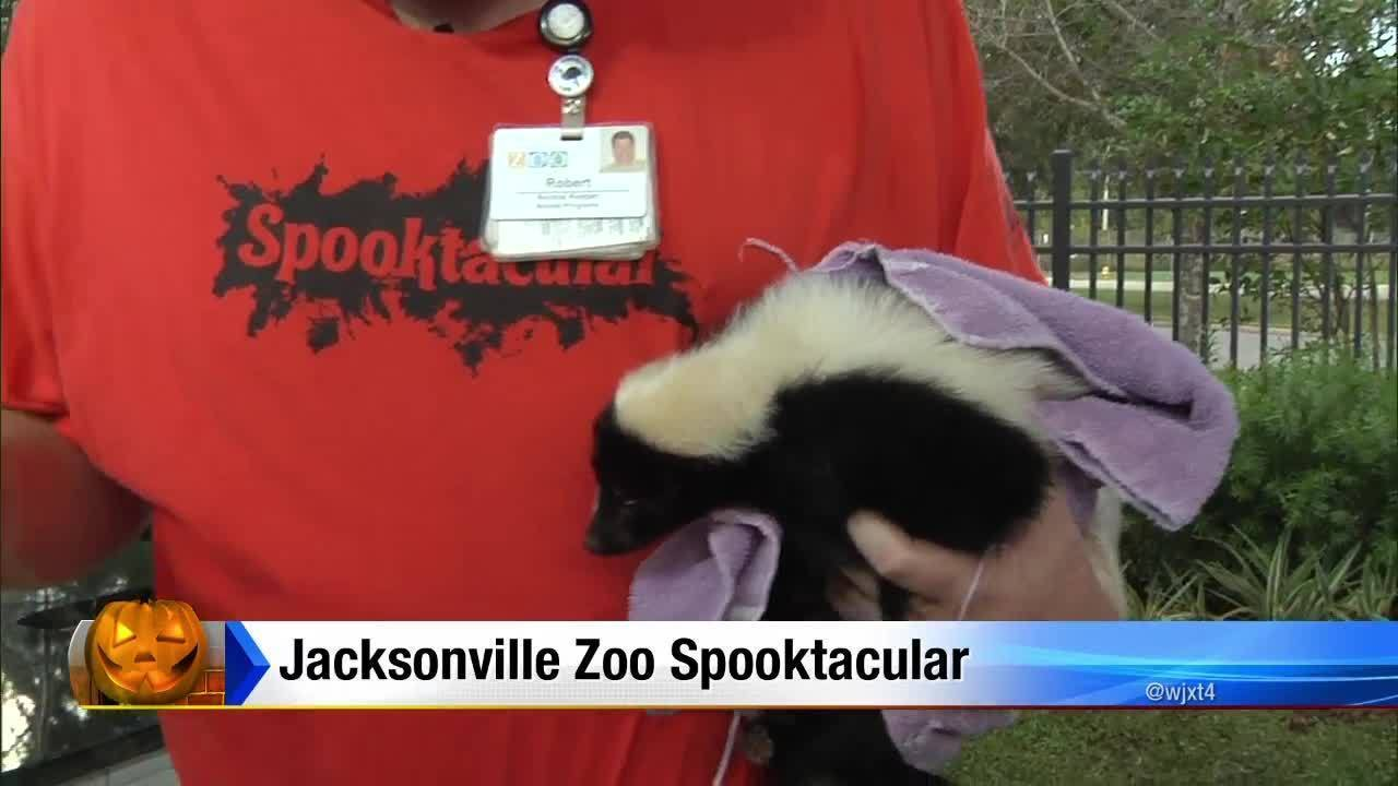 fwc helicopter with Jacksonville Zoo Spooktacular on Metal Building Construction Jobs additionally 11306425 likewise Six Car Garage In The River Club 1263236 further Thousands turn out f furthermore Huntingleashes.