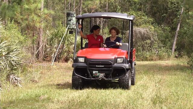 golf cart_1482955539587.jpg