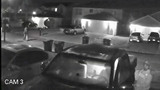 2 caught on video breaking into cars in Sutton Lakes