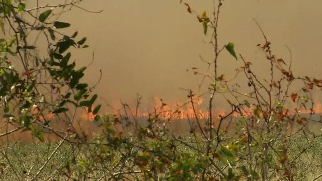 FHP monitoring 'controlled burn' on Jacksonville's Westside