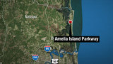 Driver dead, another hospitalized in Amelia Island crash