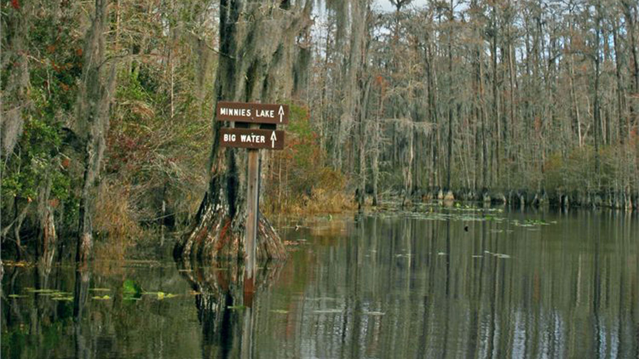 Stephen C Foster State Park Reopens Near West Mims Fire