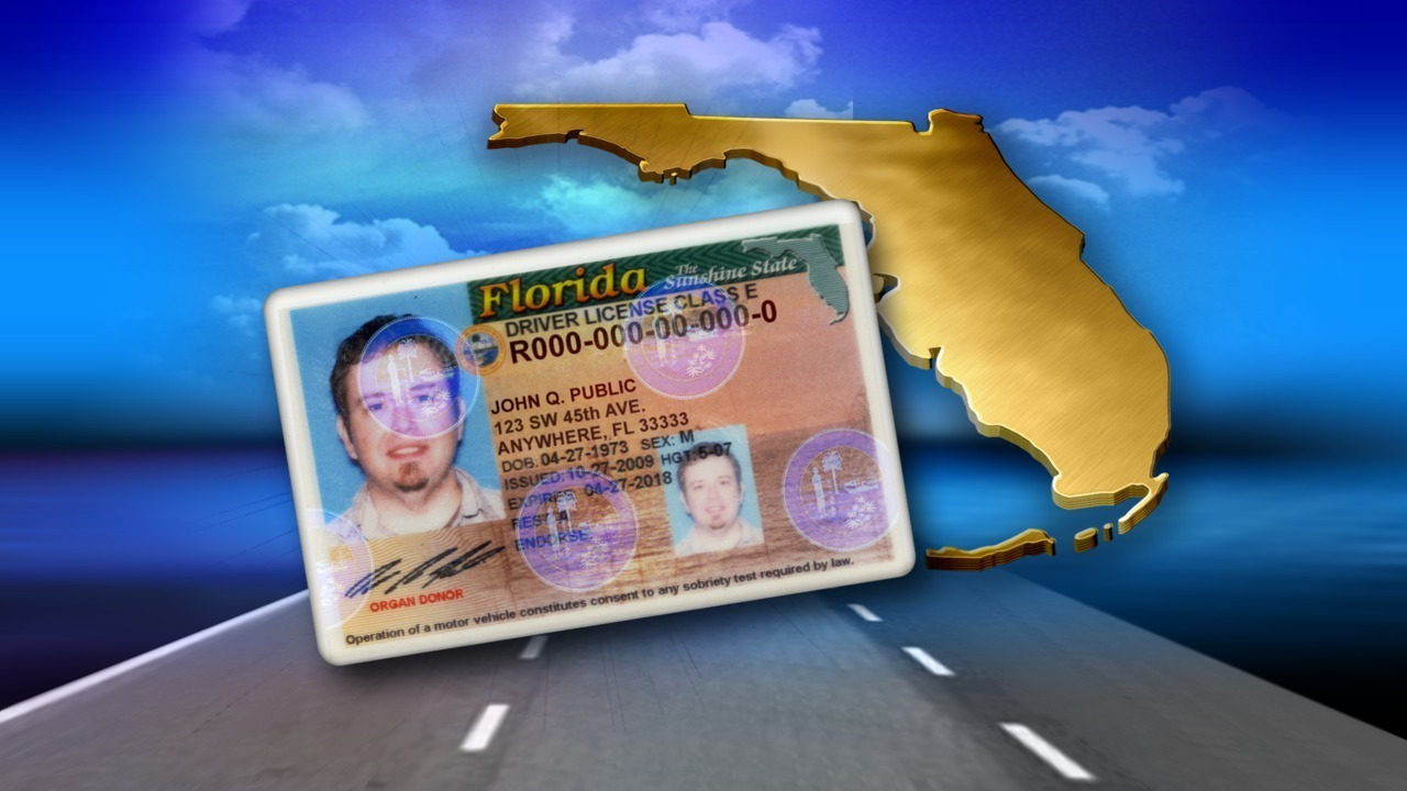 duval county drivers license test
