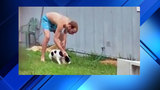 Neighbors shocked when abused puppy is returned to owner