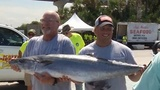 Big kingfish dominate 37th Kingfish Tournament