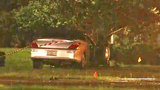 Pedestrian struck by car on Philips Highway dies
