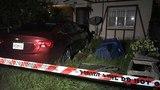 Car slams into yard, nearly misses Ribault home