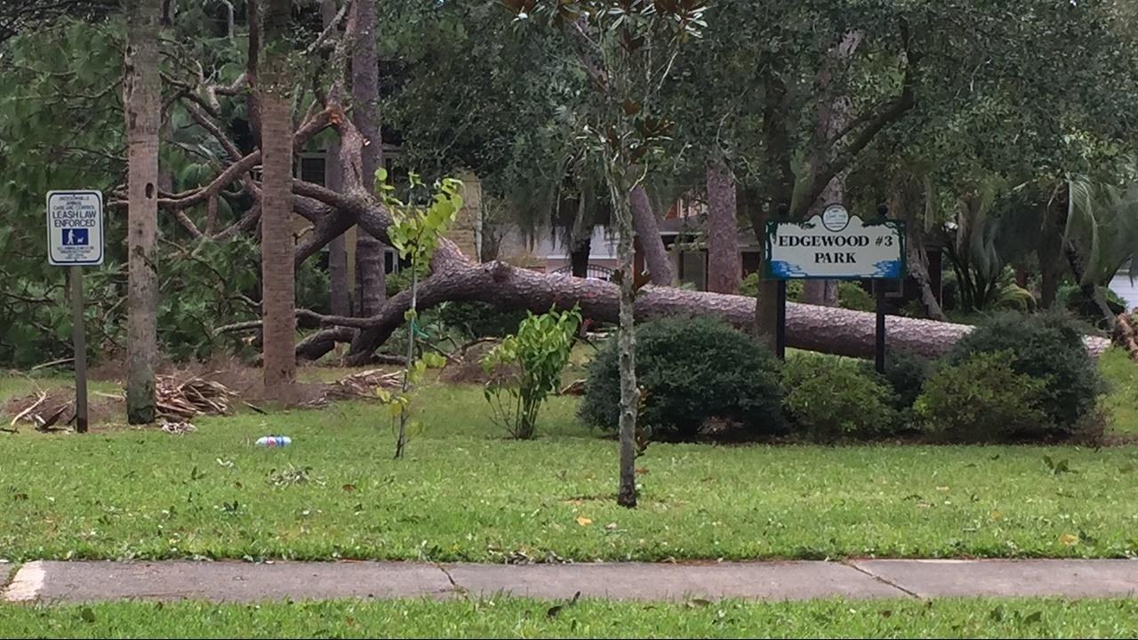 FEMA awards Jacksonville $5.2M for Hurricane Irma expenses
