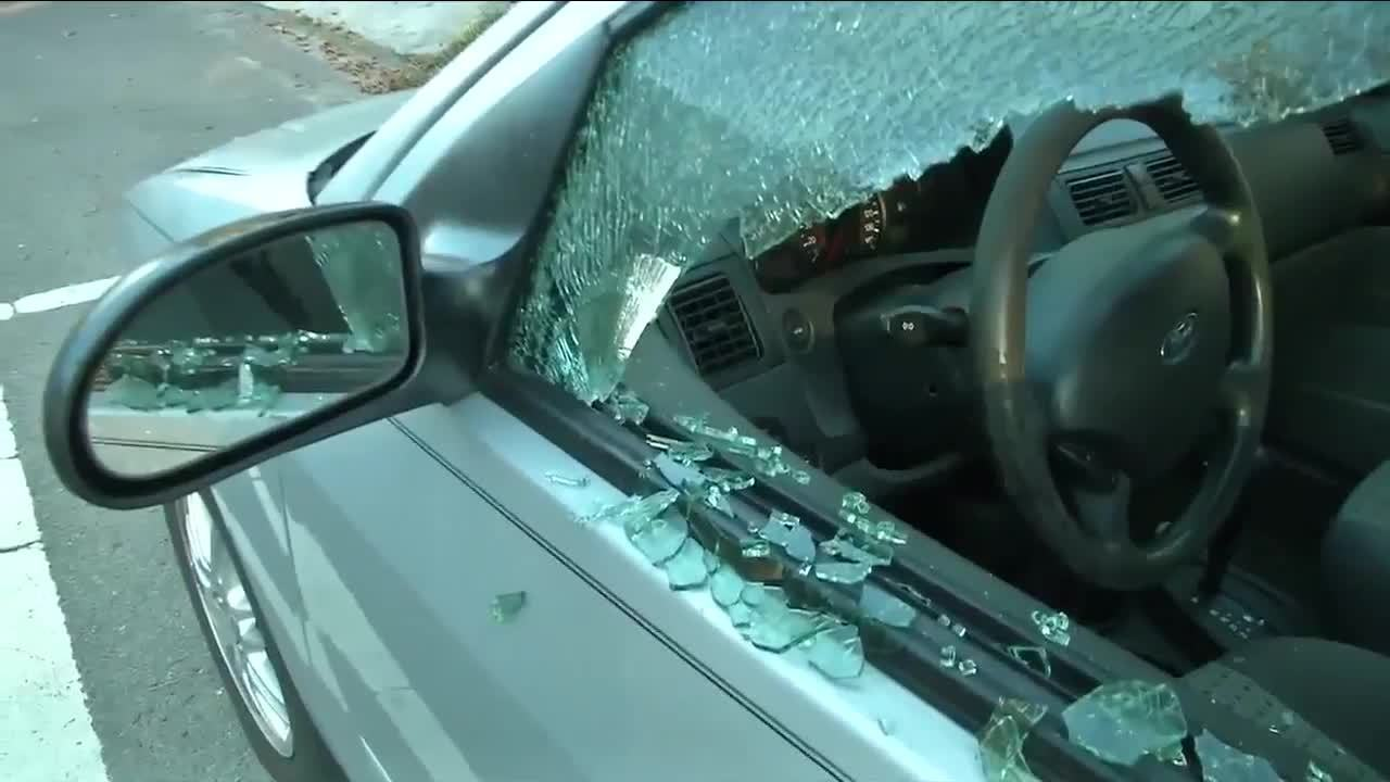 Jacksonville police search for gunman after cars shot up in...