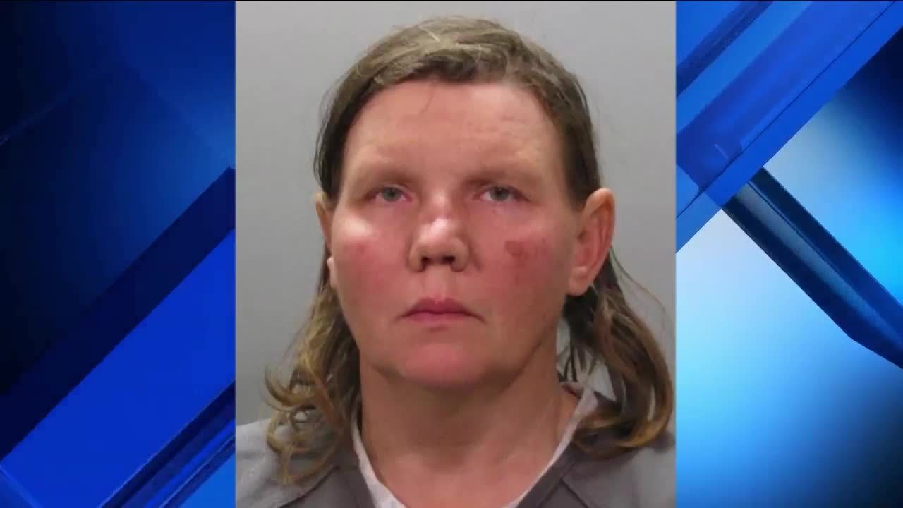 Image of: Petting News4jax Woman Arrested On Animal Cruelty Charges