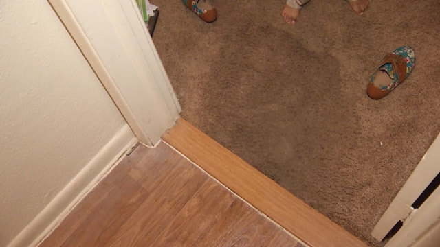 carpet_1515816458799.jpg