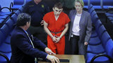 Some wanted Parkland shooter committed year before school massacre