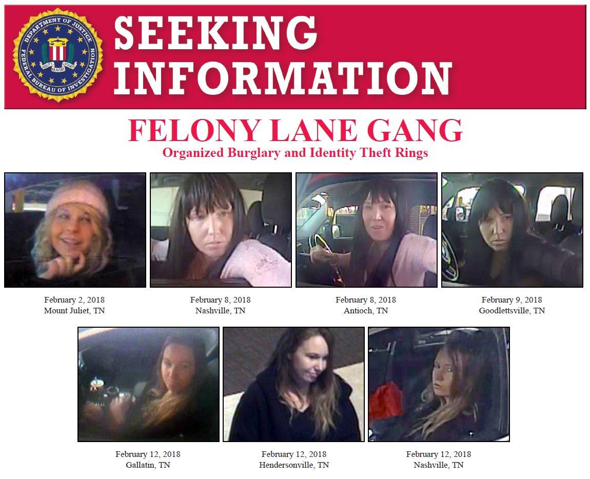 Felony Lane Gang poster