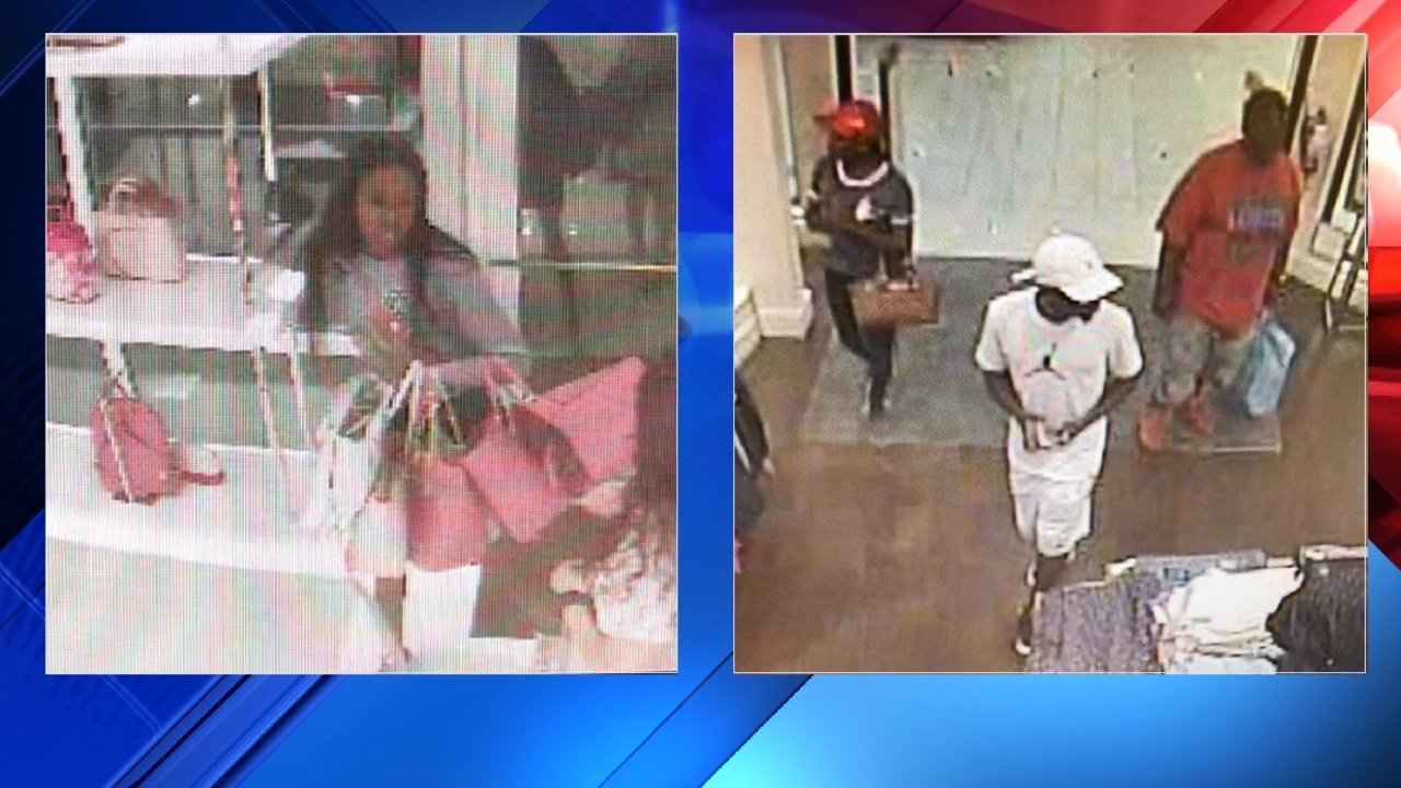 sjso  shoplifters take purses  clothing from st  augustine