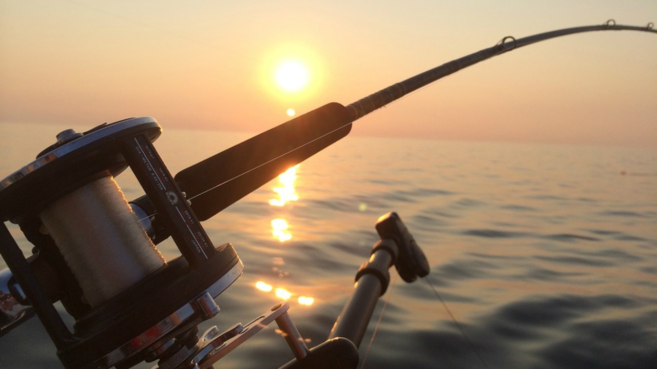 Florida license free saltwater fishing days are this weekend for Florida one day fishing license