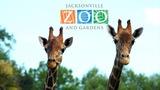 Jacksonville Zoo & Gardens Giveaway