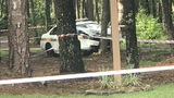Jacksonville police officer smashes cruiser into tree on Westside