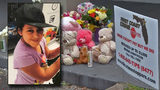 Father of 7-year-old shot: 'She died in my arms'