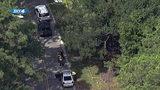 Ponte Vedra man dies after car leaves road & slams into tree