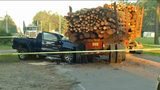 Husband, wife killed in log truck crash near Bryceville