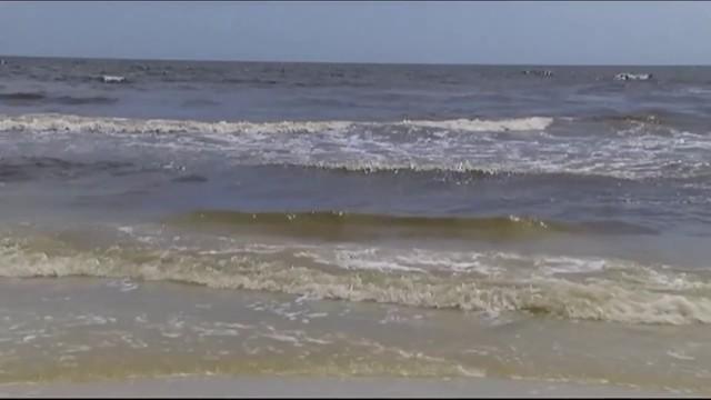 Could Red Tide Threaten Northeast Floridas Beaches