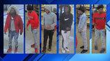 Stolen cars, guns, manhunt in St. Johns County