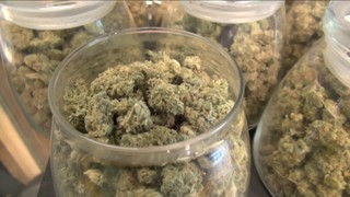 DeSantis signs bill to allow smokable pot